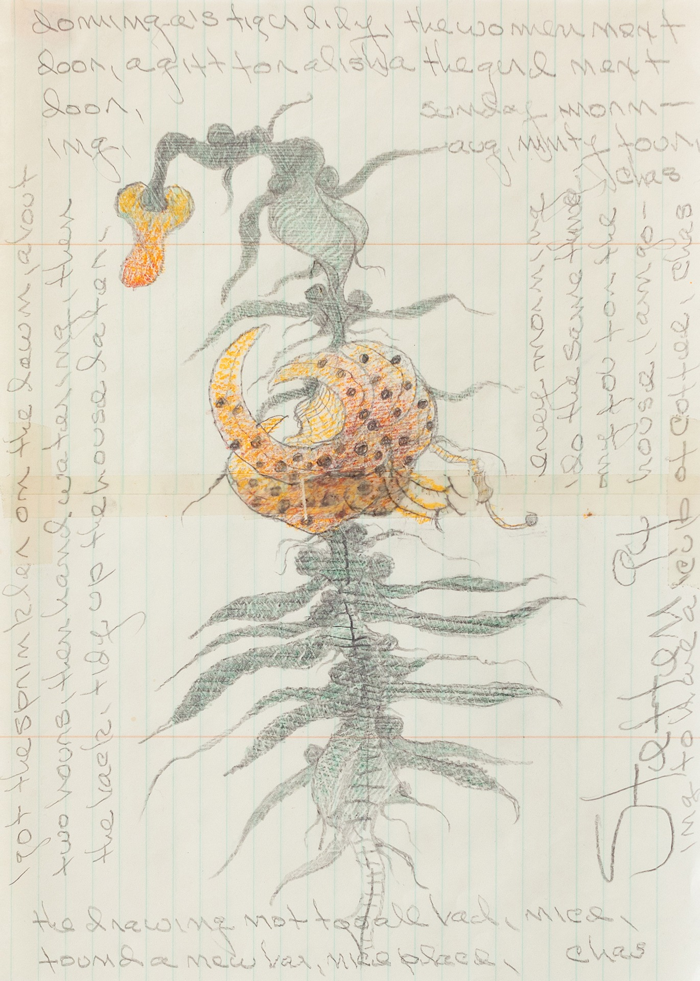 A painting by Charles Steffen titled (Dominga's Tigerlily), dated 1994.