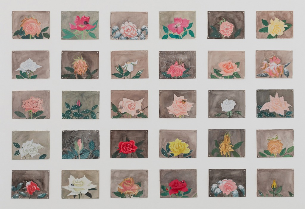 An installation of Claudia Keep's rose series at Reyes | Finn.
