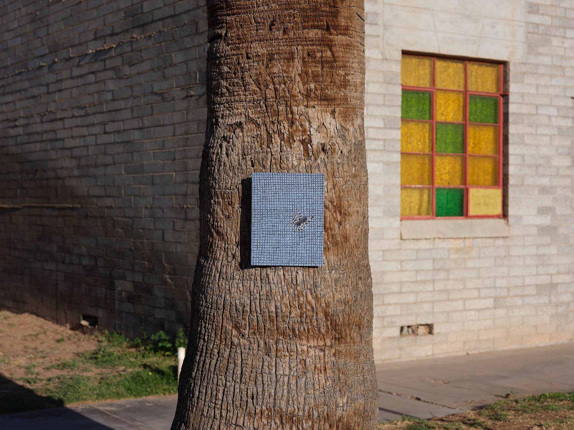 An installation view of Claudia Keep's painting, Consider the Spider, captured by photographer Tag Christof in the Western United States in 2021 for MARCH. The image shows a painting hung outside on a tree.